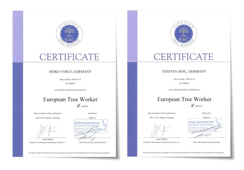European Treeworker