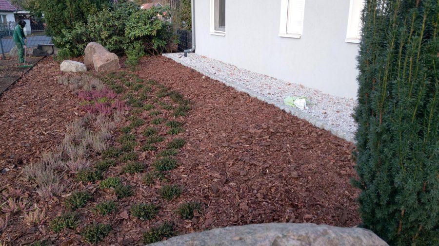 Vorgartengestaltung in Cottbus