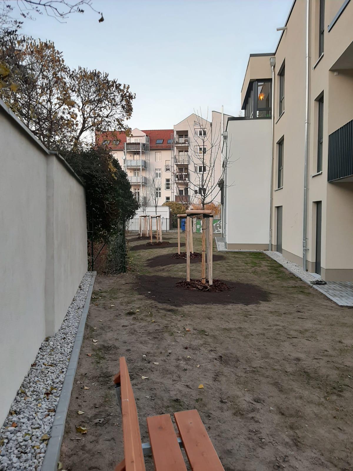 Baumpflanzung im Cottbuser Stadtgebiet