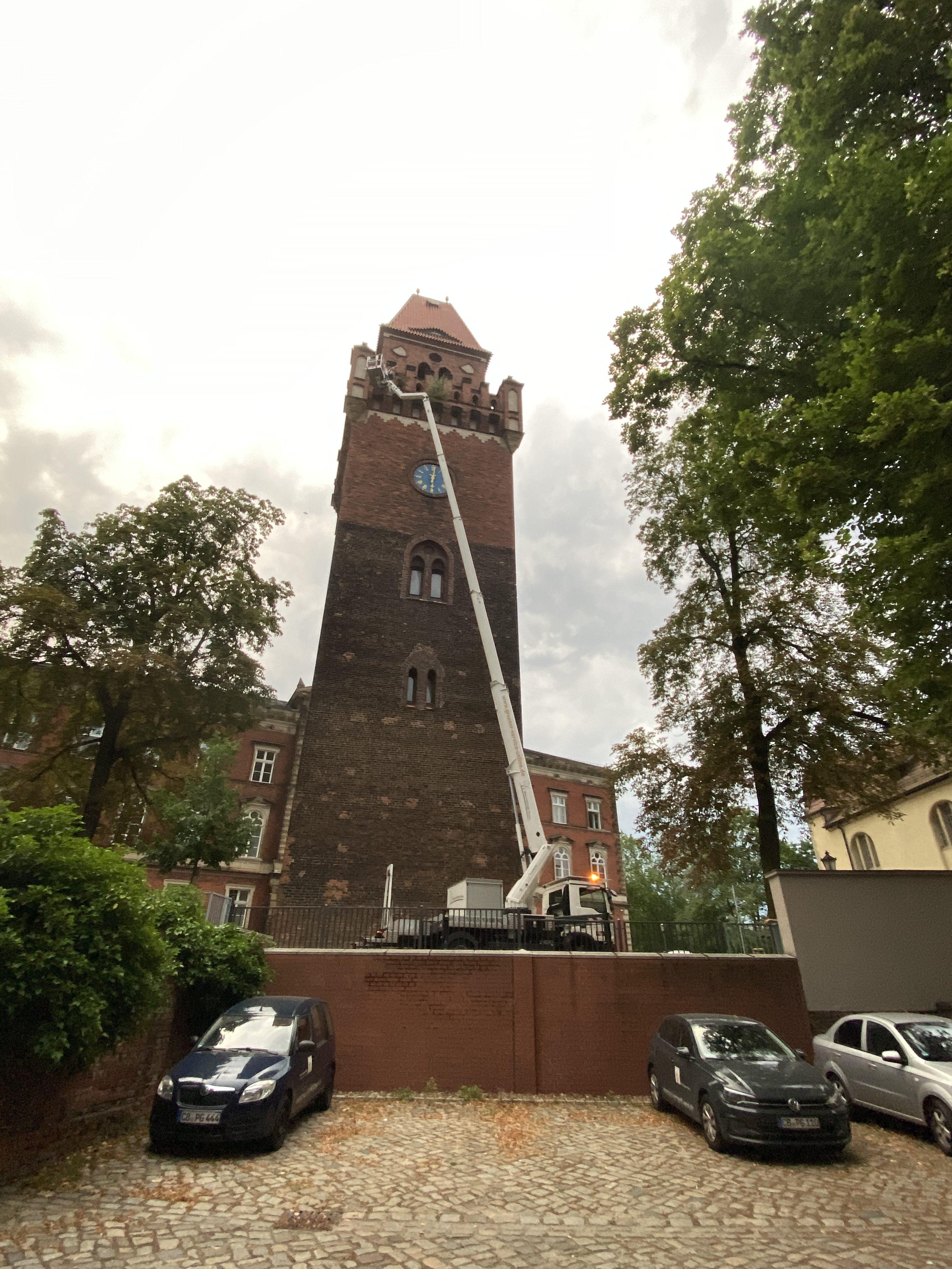Entfernung von Wildwuchs am Turm in Cottbus