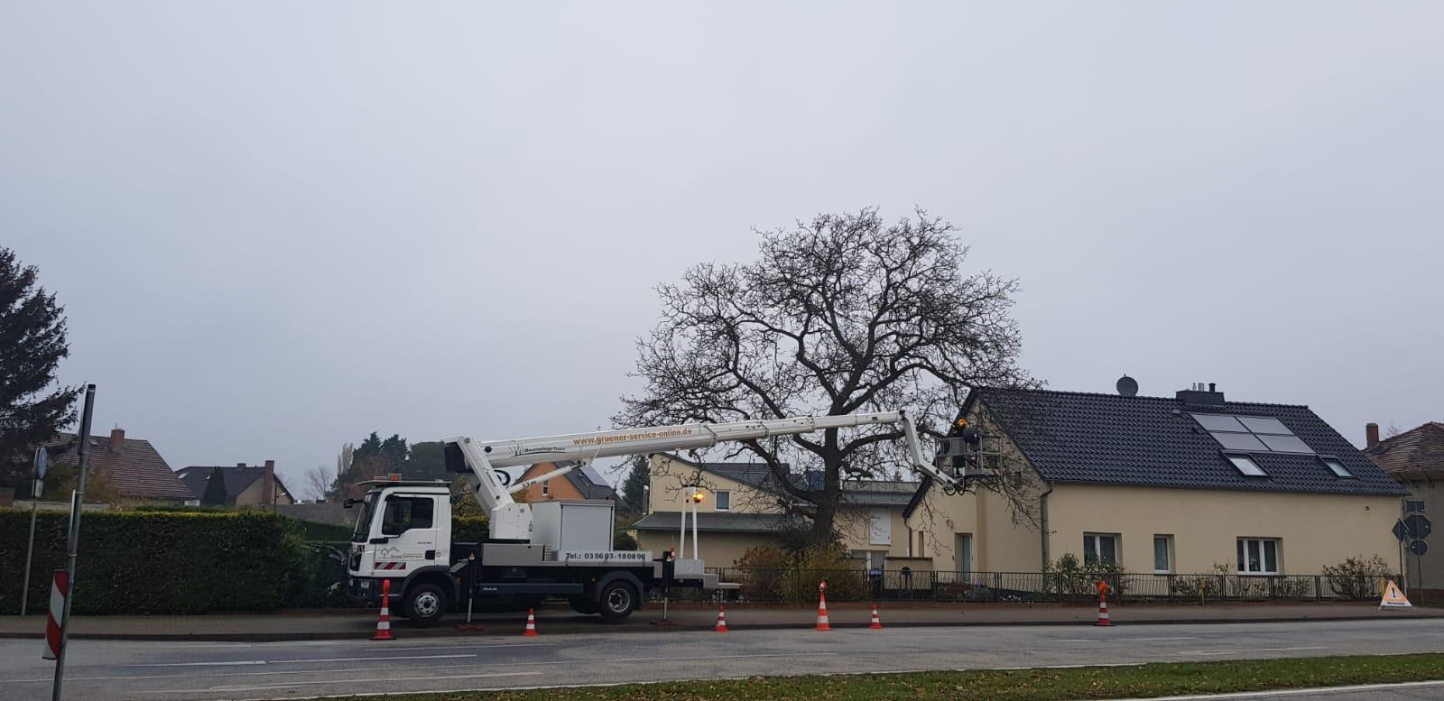 Baumpflege in Peitz