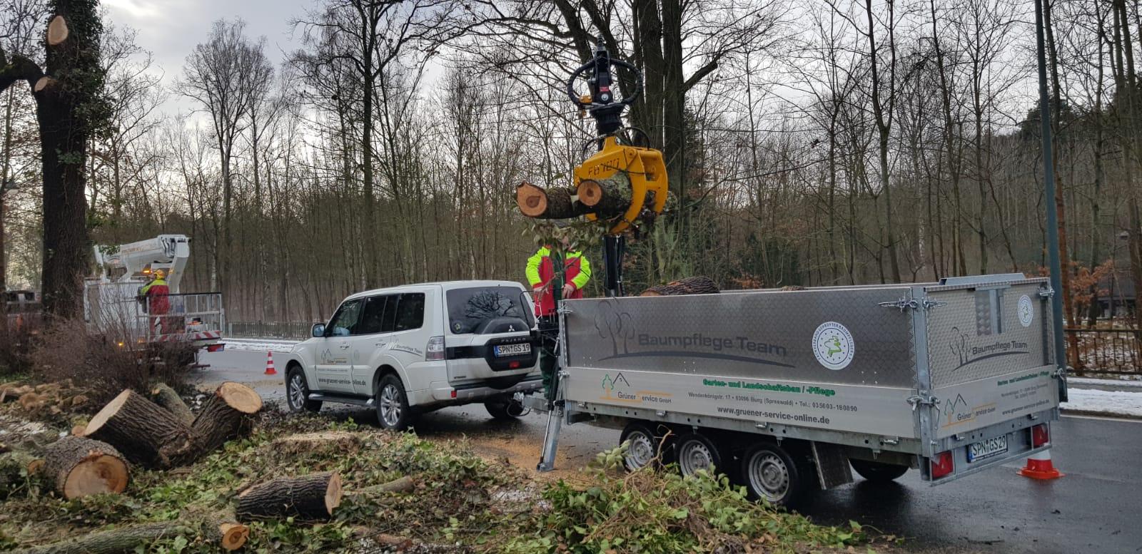 Stammholzentsorgung mittels Ladekran