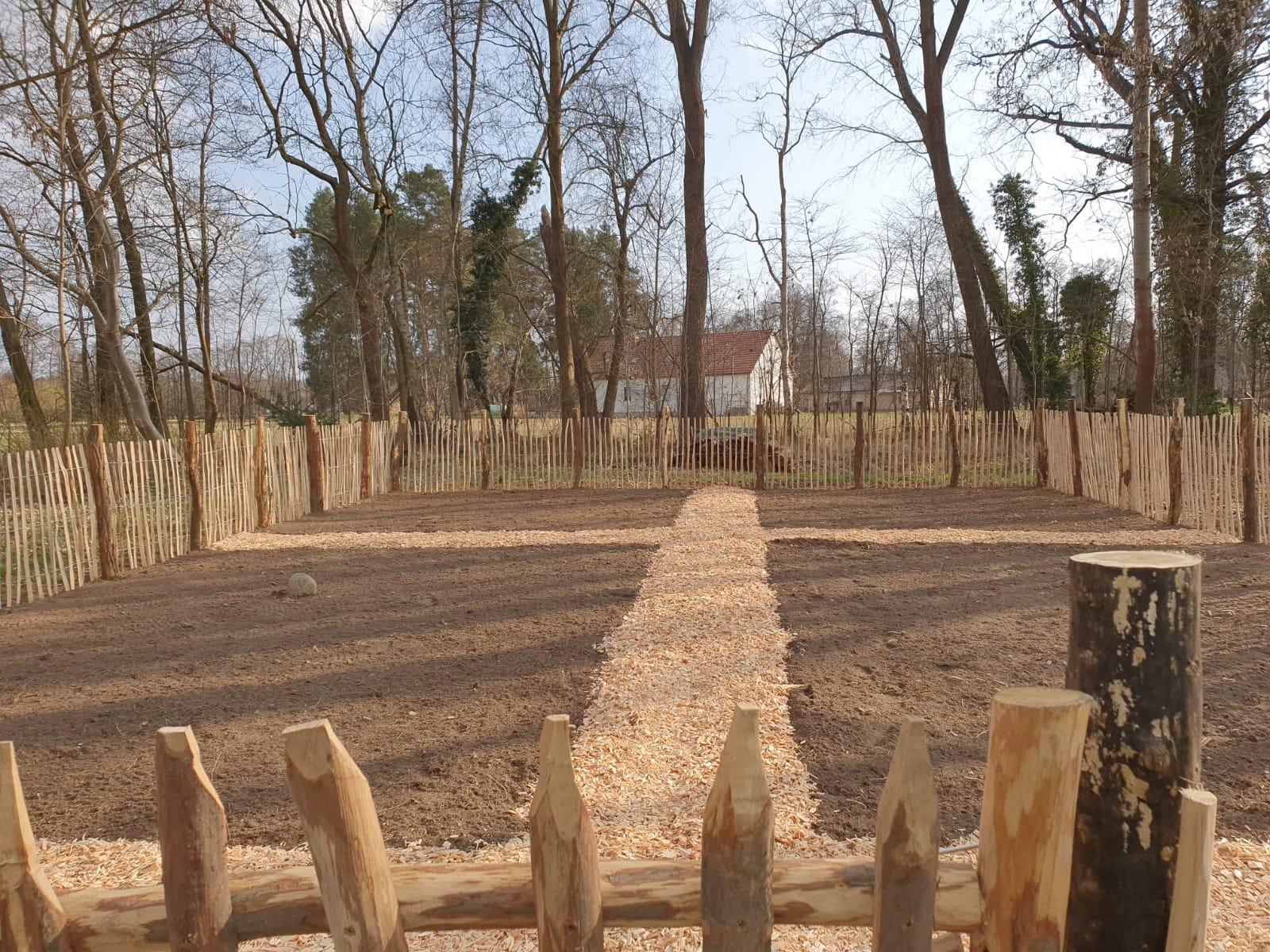 Neugestaltung Rasenfläche in Burg (nachher)