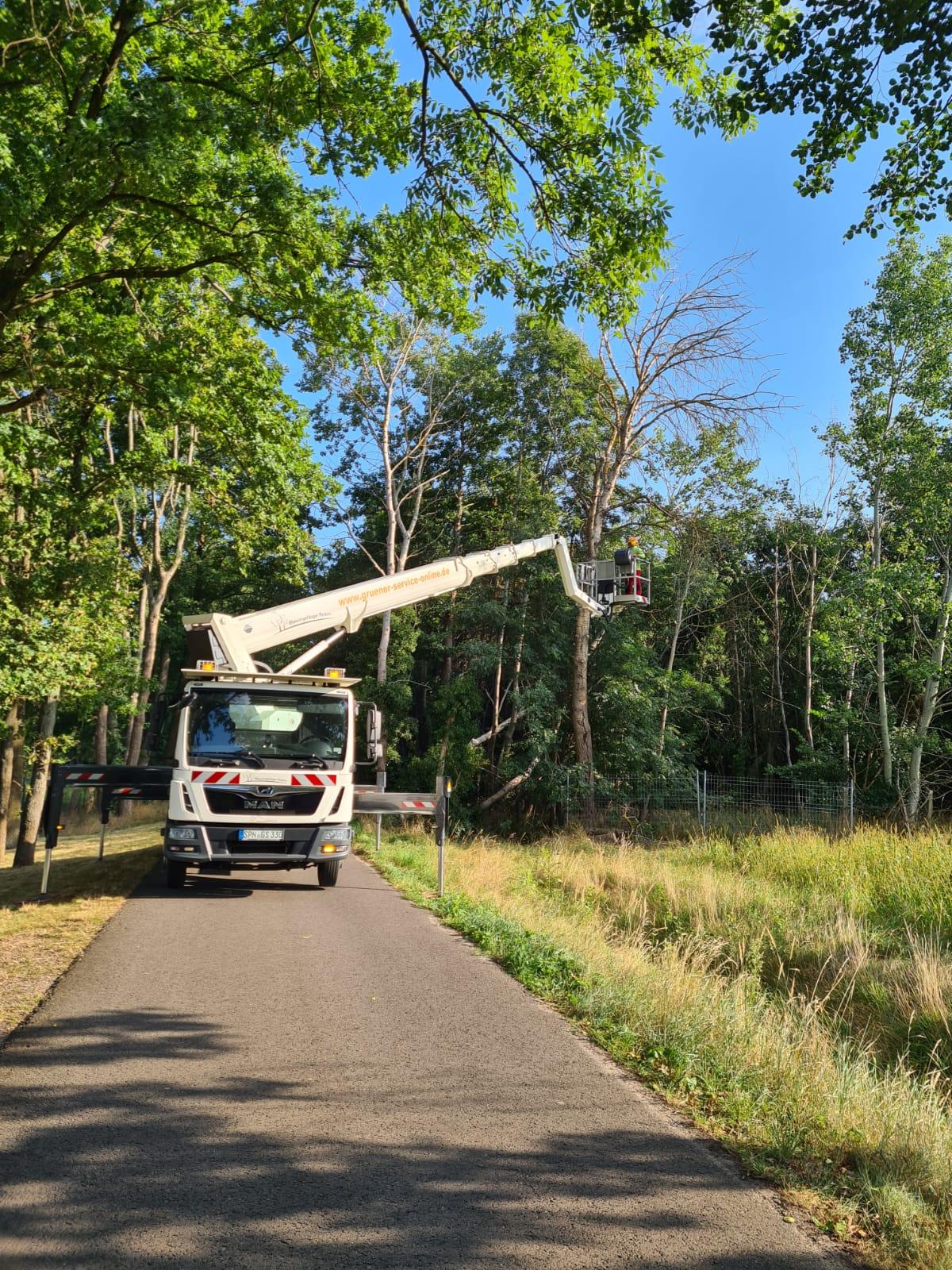 Baumarbeiten Stadt Vetschau