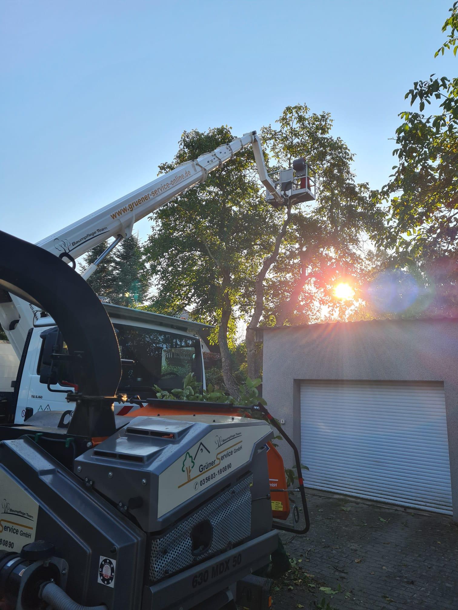 Baumarbeiten beginnen in den frühen Morgenstunden